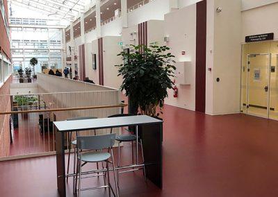 Det Nye Universitetshospital gulv og vægdekoration