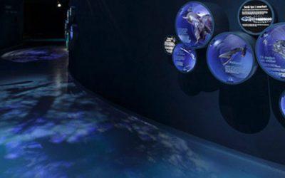 Areo udfører opgave på Den Blå Planet